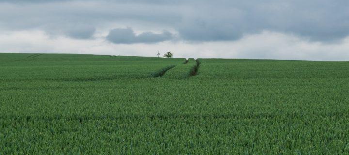 Fietsen langs de Thüringer Städtekette