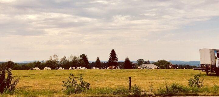 Fietsen door Bergisches Land, een ontdekkingsreis vlak over de grens